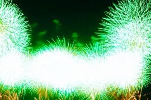 琵琶湖花火大会の画像