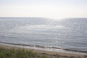 琵琶湖でバーベキューが出来る綺麗な水泳場