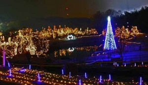京都府城陽市のクリスマスイルミネーション情報の画像