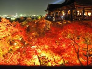 紅葉のライトアップスポットの京都清水寺