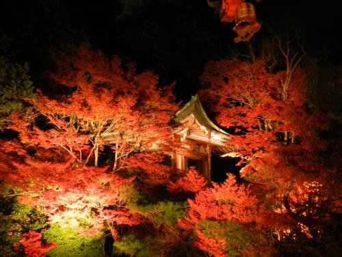 京都で穴場の紅葉スポット毘沙門堂門跡のライトアップ