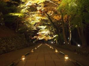 京都の穴場紅葉スポットである毘沙門堂門跡