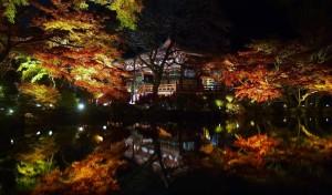 ライトアップされた醍醐寺の紅葉