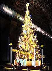 京都のクリスマスイルミネーションの定番京都駅ビルの画像