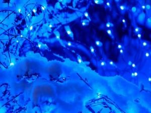 クリスマスで高校生におすすめの京都のデートスポット