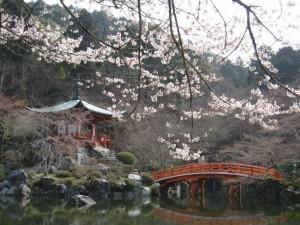 醍醐寺の花見に欠かせない弁天堂の桜