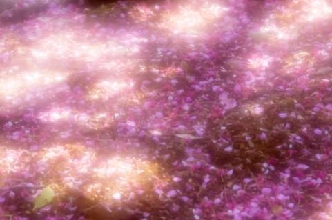 吉野の千本桜が散った後