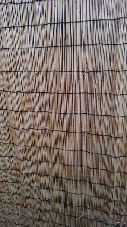 紙紐で結んだところに木工用ボンドを付けたところ